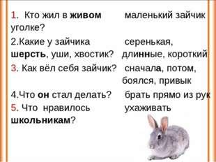 1. Кто жил в живом уголке? маленький зайчик 2.Какие у зайчика шерсть, уши, х