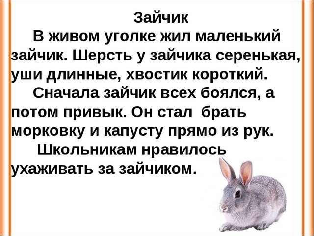 Зайчик В живом уголке жил маленький зайчик. Шерсть у зайчика серенькая, уши д...