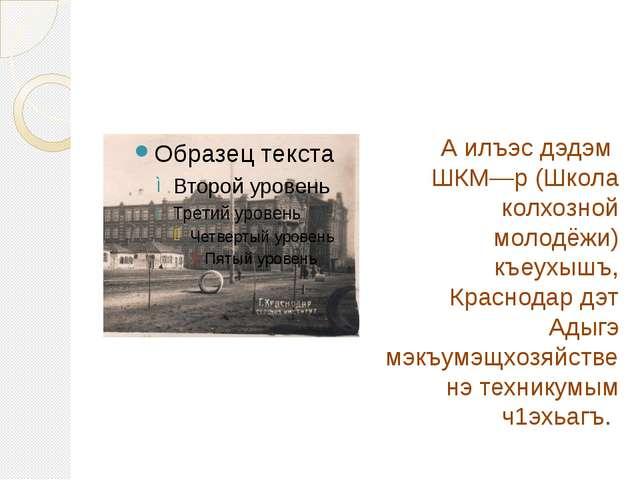 А илъэс дэдэм ШКМ—р (Школа колхозной молодёжи) къеухышъ, Краснодар дэт Адыгэ...