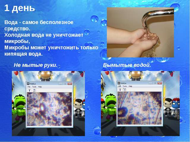 Не мытые руки. Вымытые водой. 1 день. Вода - самое бесполезное средство. Холо...