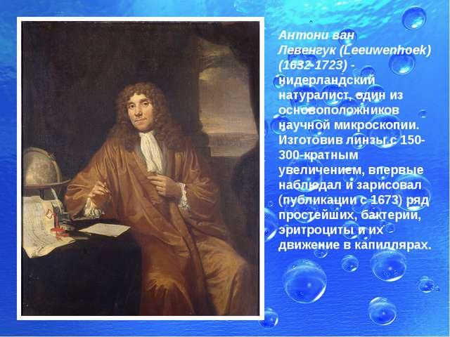 Антони ван Левенгук(Leeuwenhoek) (1632-1723) - нидерландский натуралист, оди...