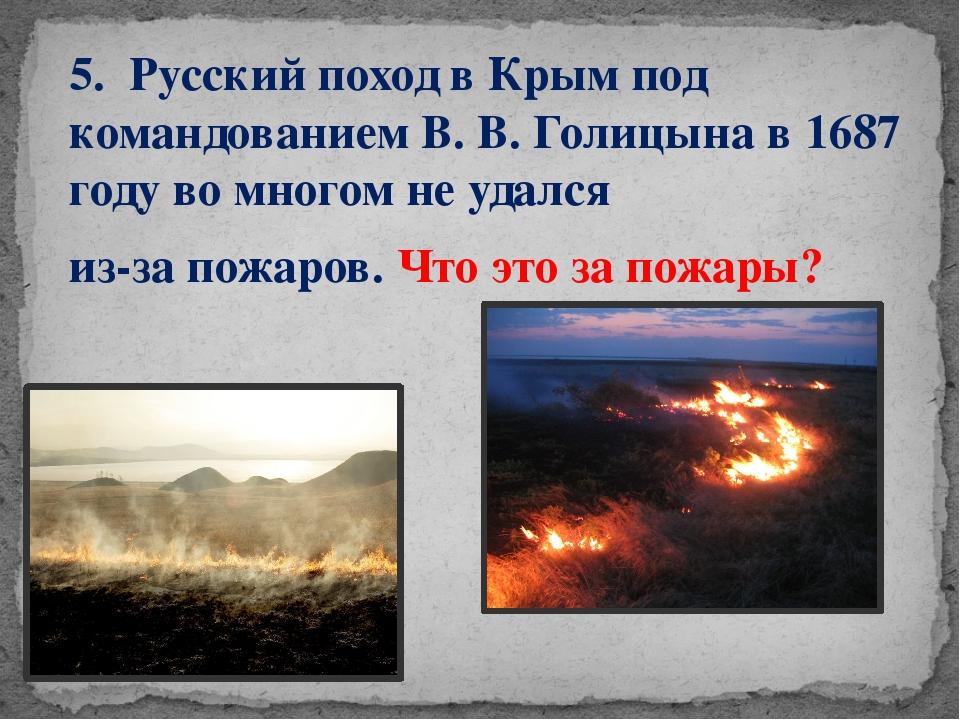 5. Русский поход вКрымпод командованием В. В. Голицына в 1687 году во много...