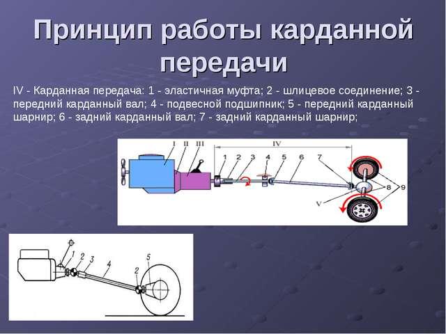 Принцип работы карданной передачи IV - Карданная передача: 1 - эластичная муф...