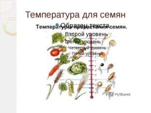 Температура для семян