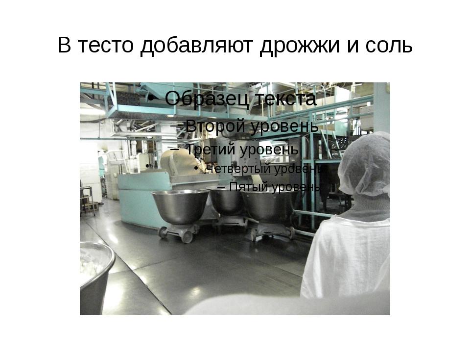 В тесто добавляют дрожжи и соль
