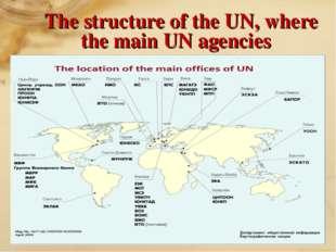 The structure of the UN, where the main UN agencies