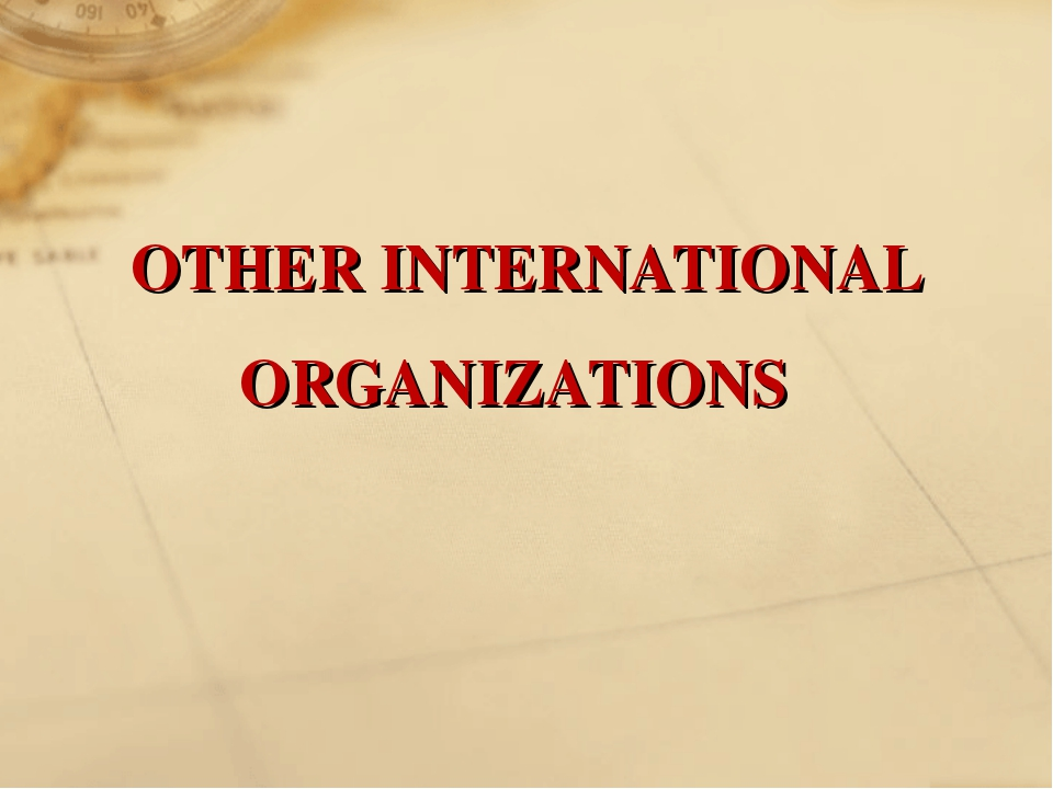 OTHER INTERNATIONAL ORGANIZATIONS
