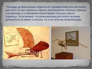 Леонардо да Винчи решил обратиться к проверенному способу полета. Для этого