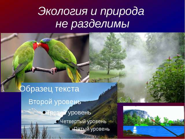 Экология и природа не разделимы