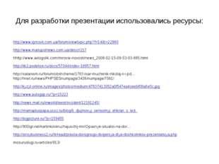 Для разработки презентации использовались ресурсы: http://www.igrosvit.com.ua