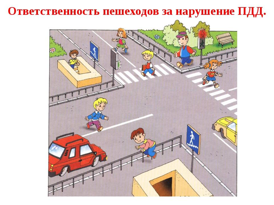 Правила дорожного движения для пешеходов в картинках