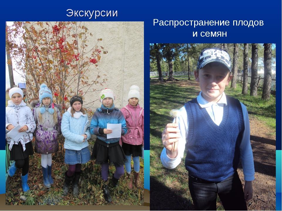Экскурсии Распространение плодов и семян
