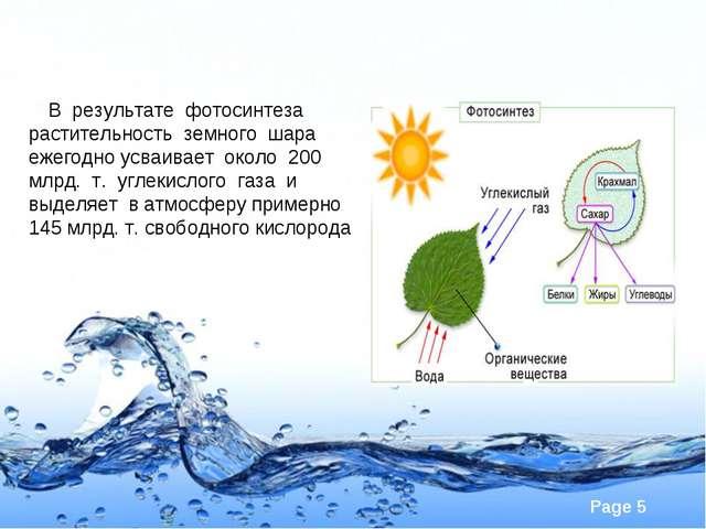 В результате фотосинтеза растительность земного шара ежегодно усваивает окол...