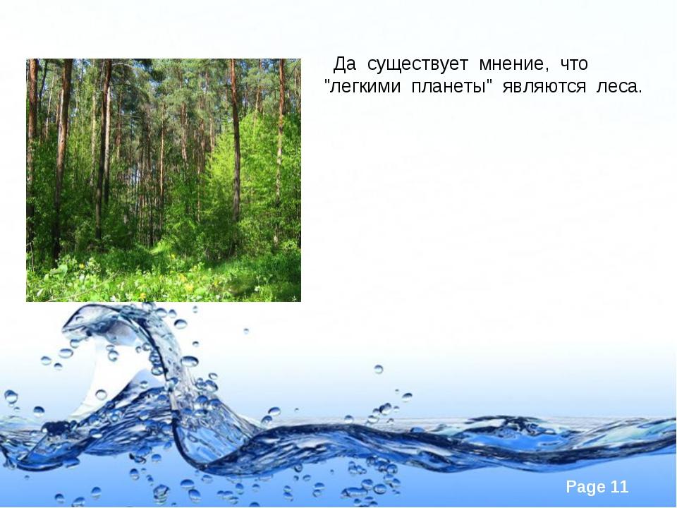 """Да существует мнение, что """"легкими планеты"""" являются леса. Page *"""