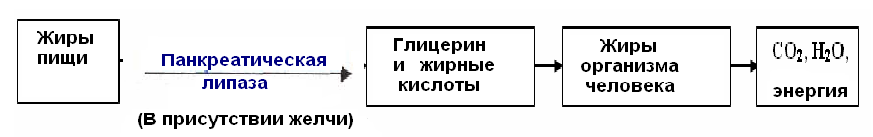 hello_html_66315744.png
