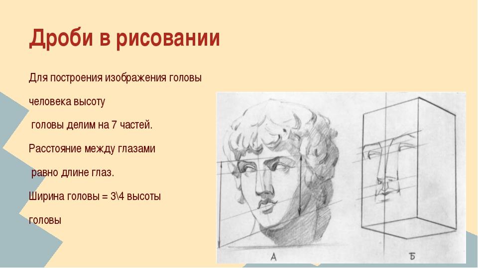 Дроби в рисовании Для построения изображения головы человека высоту головы де...