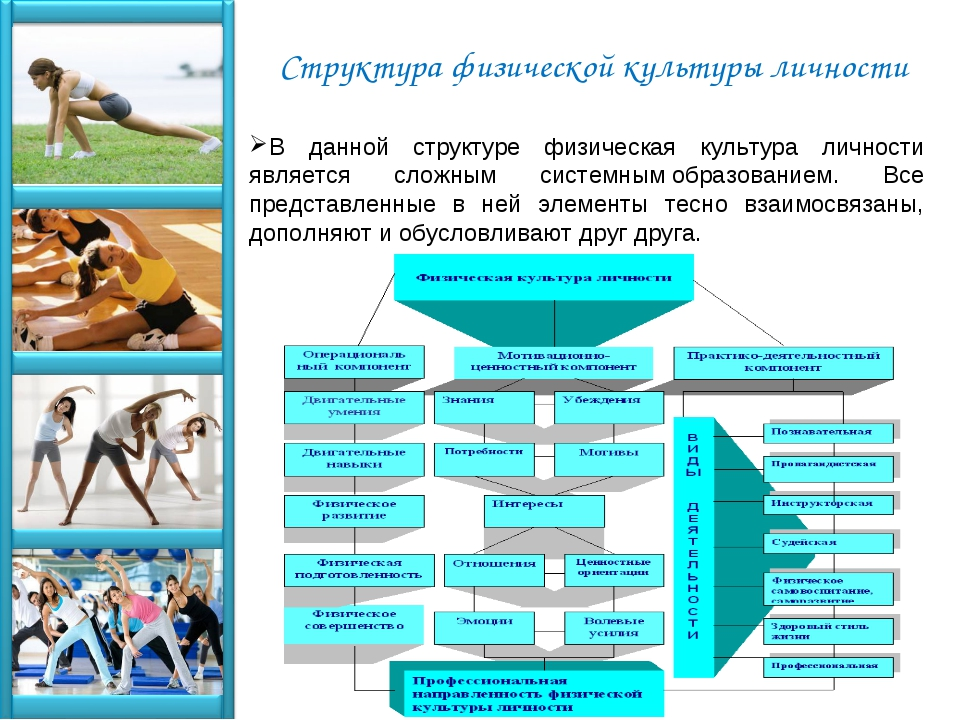 Структура физической культуры личности В данной структуре физическая культура...