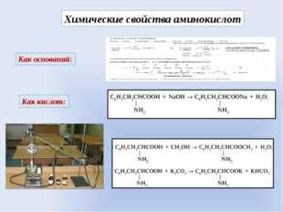 Химические свойства аминокислот Как оснований: Как кислот:
