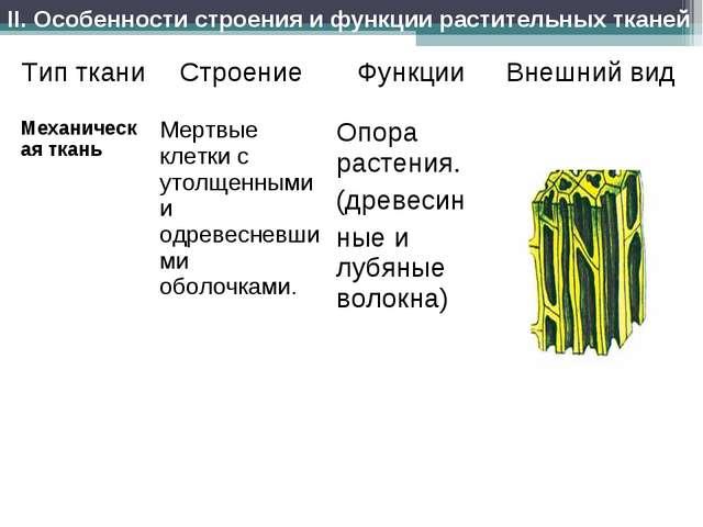 II. Особенности строения и функции растительных тканей Тип тканиСтроениеФун...