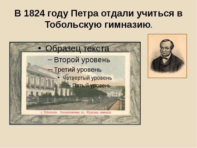 В 1824 году Петра отдали учиться в Тобольскую гимназию.
