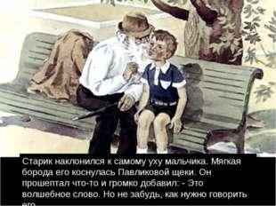 Старик наклонился к самому уху мальчика. Мягкая борода его коснулась Павликов