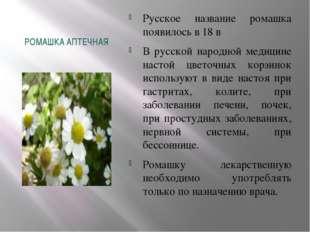 РОМАШКА АПТЕЧНАЯ Русское название ромашка появилось в 18 в В русской народной