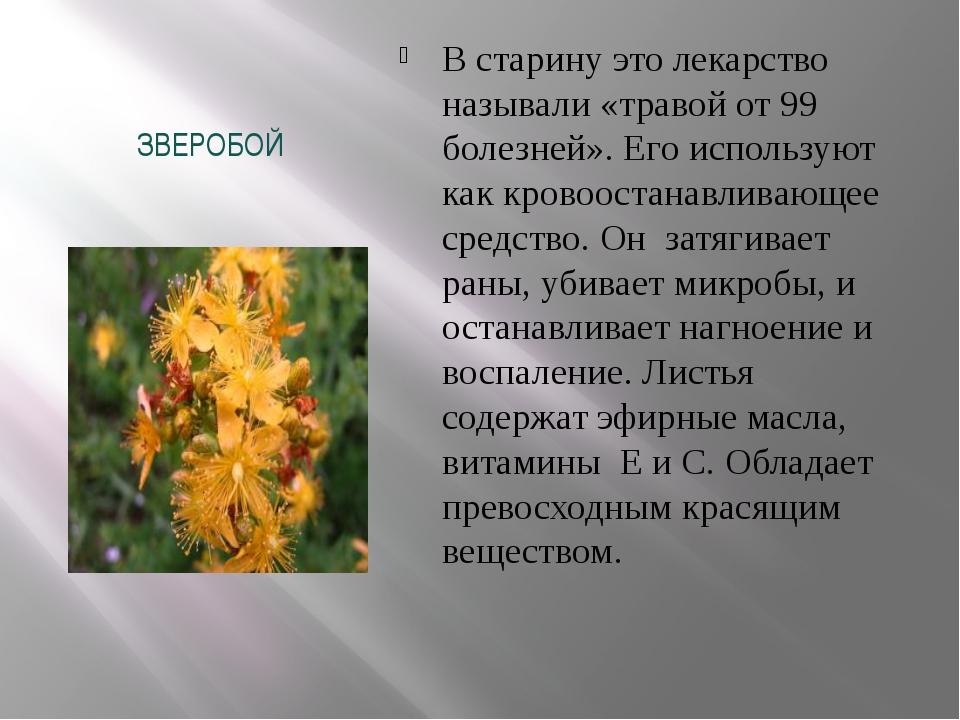 ЗВЕРОБОЙ В старину это лекарство называли «травой от 99 болезней». Его исполь...