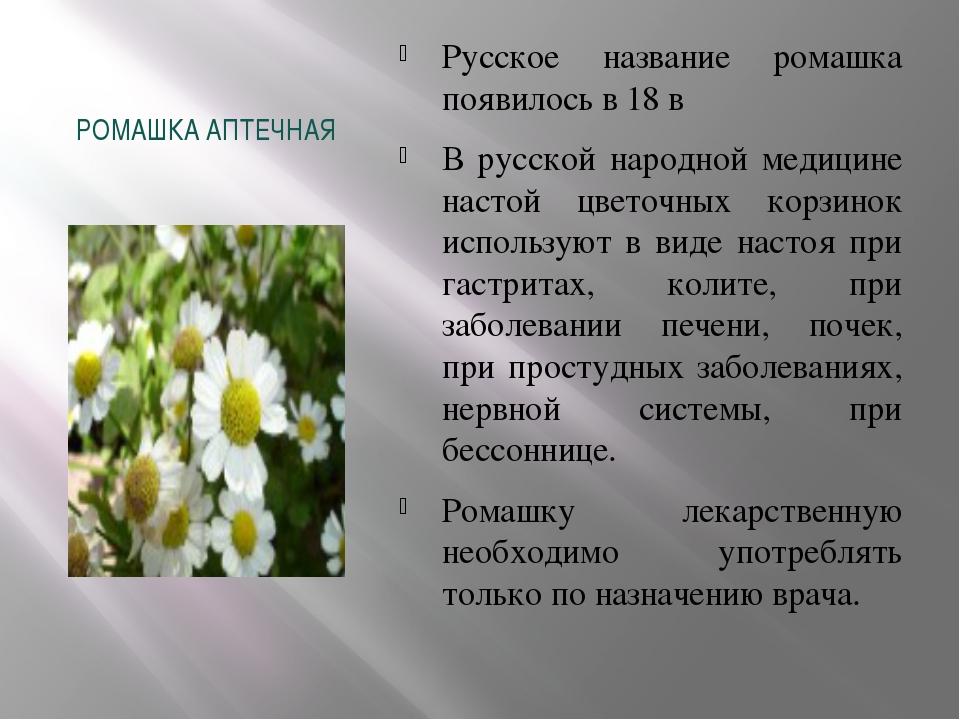 РОМАШКА АПТЕЧНАЯ Русское название ромашка появилось в 18 в В русской народной...