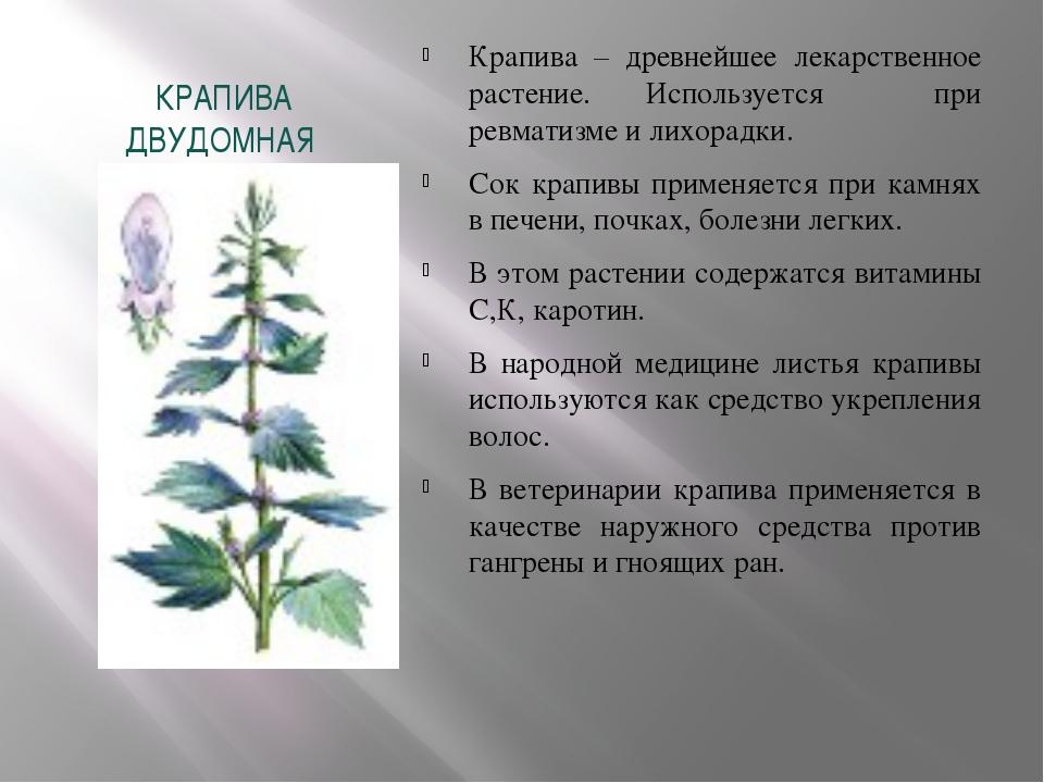 препараты против кишечных паразитов