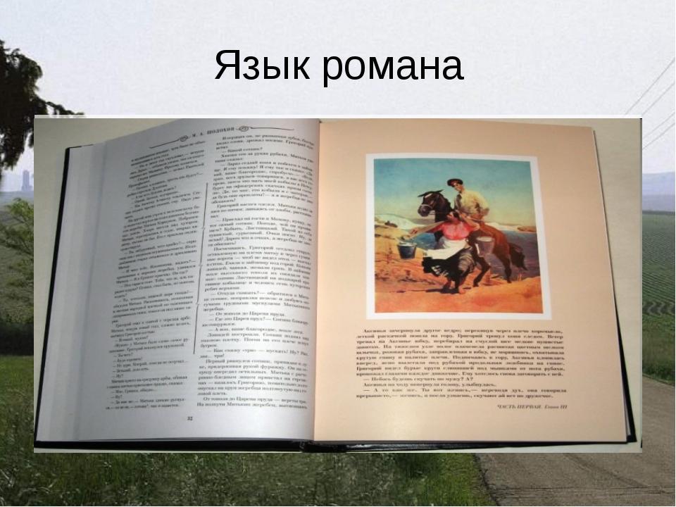 Язык романа