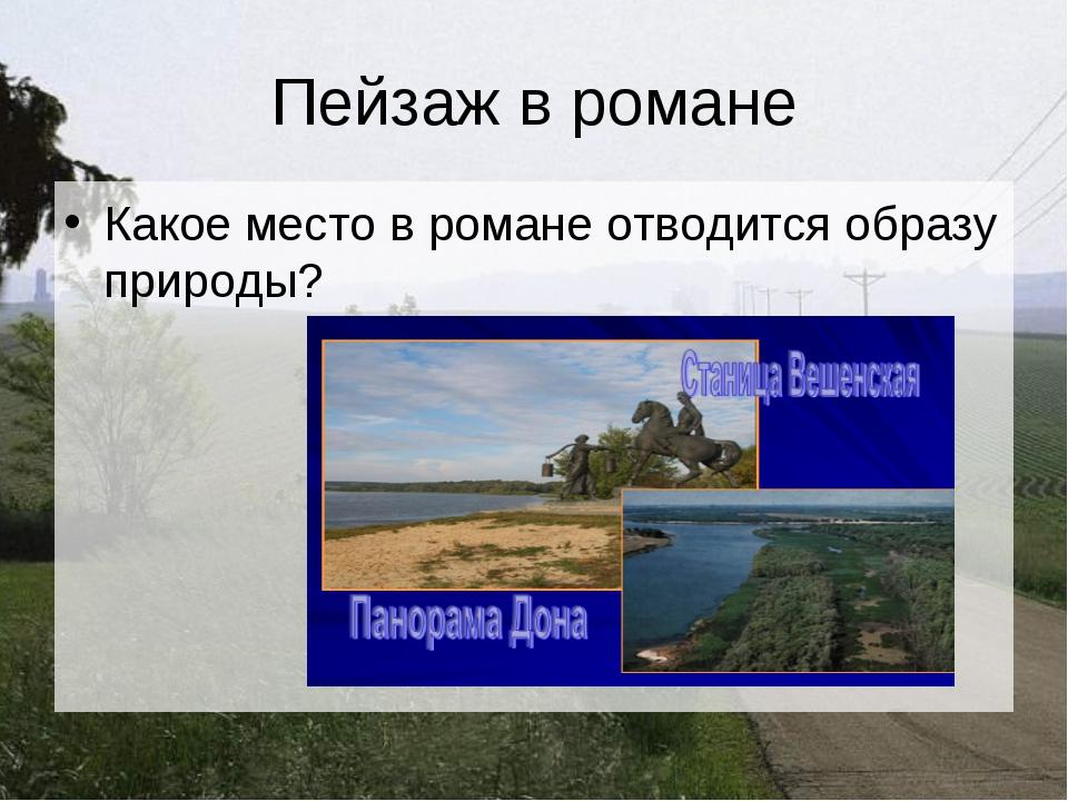 Пейзаж в романе Какое место в романе отводится образу природы?