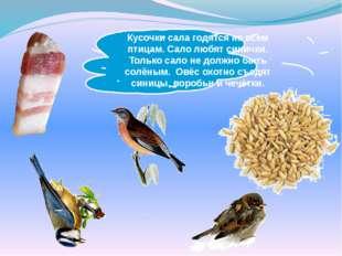 Кусочки сала годятся не всем птицам. Сало любят синички. Только сало не должн