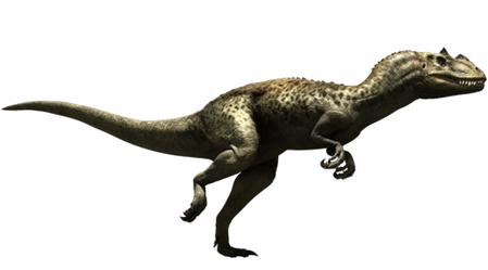 01ceratosaurus637.bmp