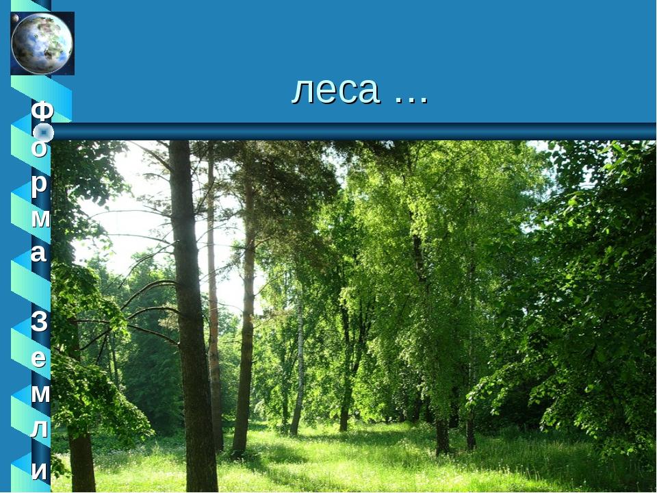 леса …