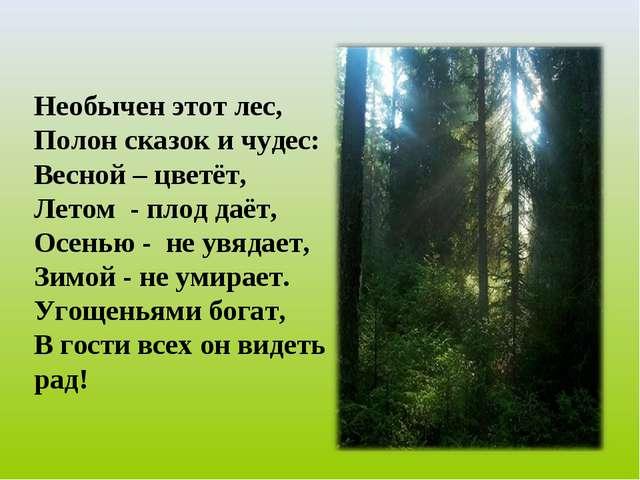Необычен этот лес, Полон сказок и чудес: Весной – цветёт, Летом - плод даёт,...