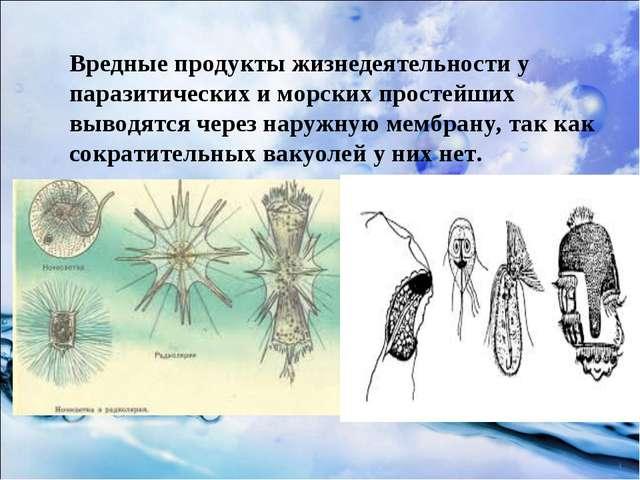 Вредные продукты жизнедеятельности у паразитических и морских простейших выво...