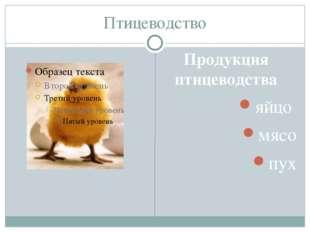 Птицеводство Продукция птицеводства яйцо мясо пух