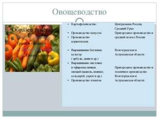 Овощеводство Картофелеводство Производство капусты Производствокорнеплодов Вы