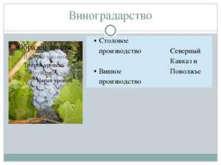Виноградарство Столовое производство Винноепроизводство СеверныйКавказ и Пово