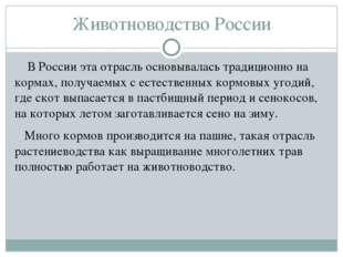 Животноводство России В России эта отрасль основывалась традиционно на кормах