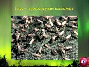 Гнус – кровососущие насекомые Да