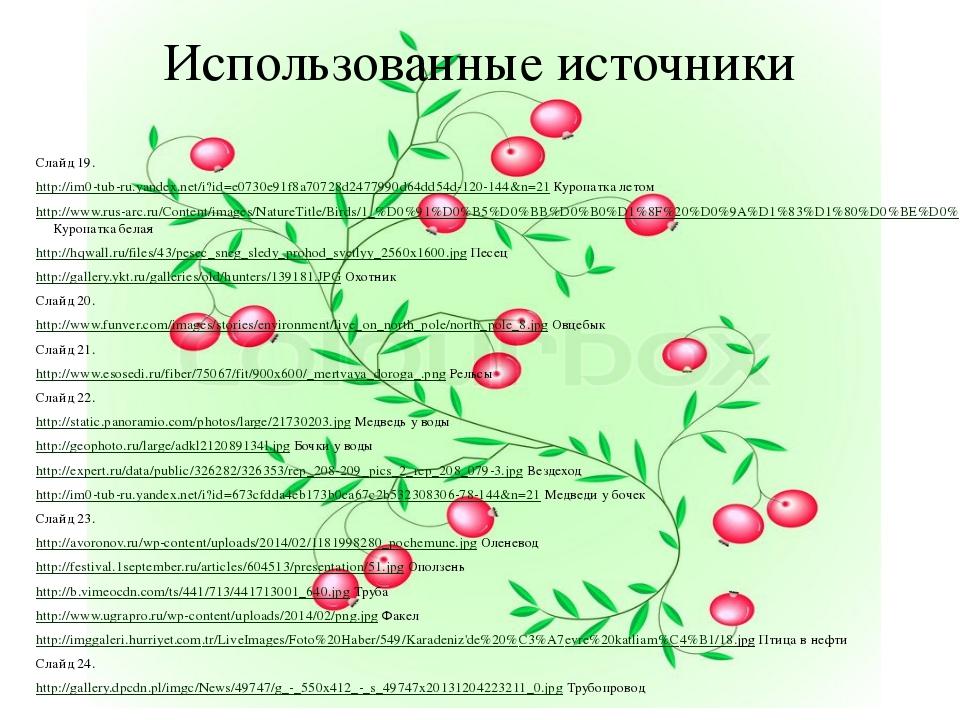Использованные источники Слайд 19. http://im0-tub-ru.yandex.net/i?id=e0730e91...