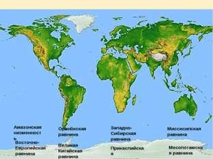 Амазонская низменность Восточно-Европейская равнина Западно-Сибирская равнина