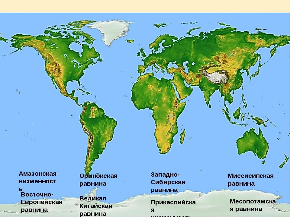 Амазонская низменность Восточно-Европейская равнина Западно-Сибирская равнина...