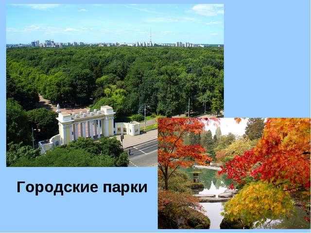 Городские парки