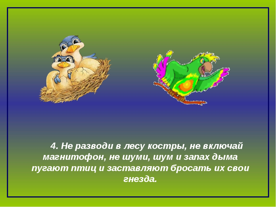 4. Не разводи в лесу костры, не включай магнитофон, не шуми, шум и запах дым...
