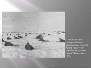 В такой, насквозь простреливаемой степи, воинам Красной Армии предстояло отра