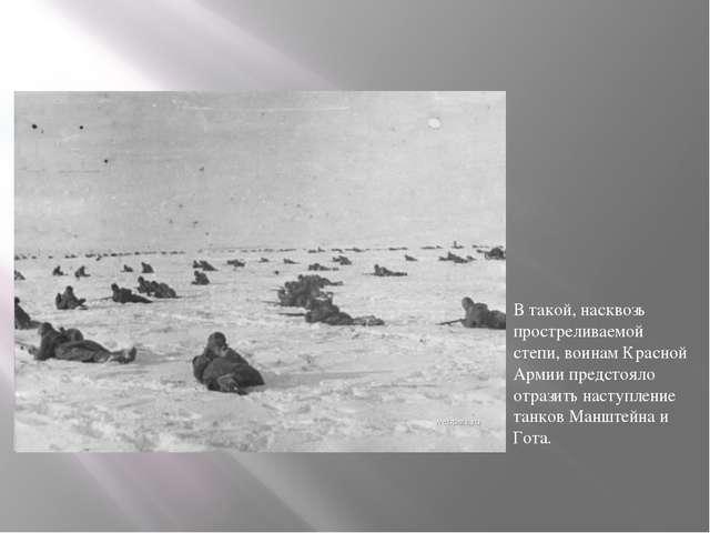 В такой, насквозь простреливаемой степи, воинам Красной Армии предстояло отра...