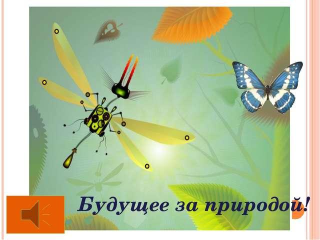 Будущее за природой! В практике исследований родился особый подход к организа...