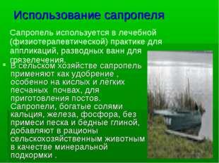 Использование сапропеля В сельском хозяйстве сапропель применяют как удобрени